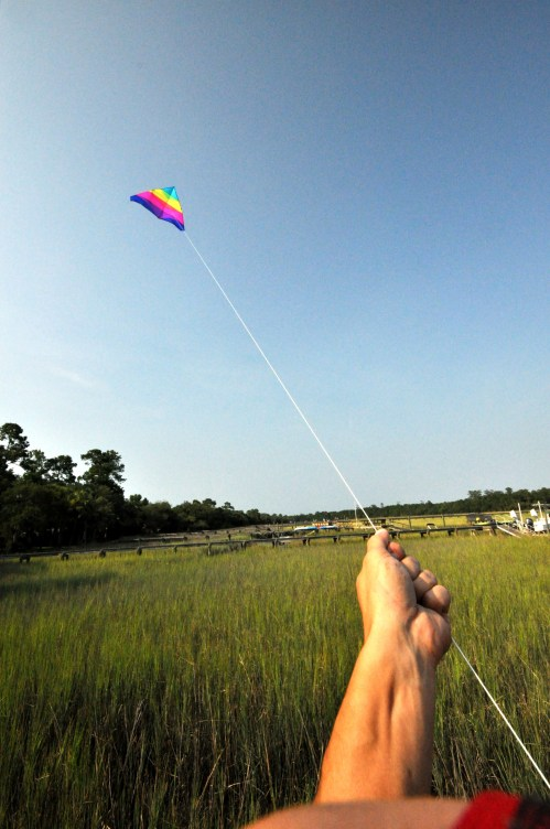 Rainbow kite over the marsh